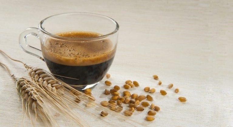 Caffè d'orzo: cos'è,proprietà, benefici e controindicazioni