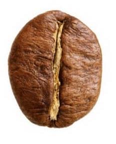 caffè robusta