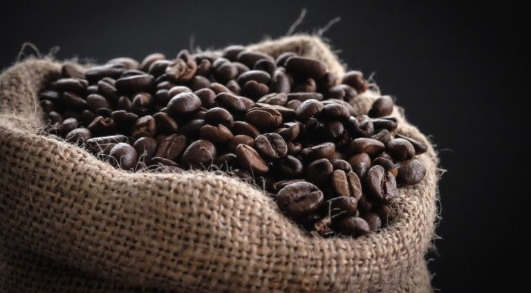 Caffè arabica e robusta: quali sono le differenze e le miscele