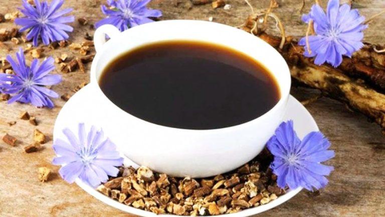 Caffè di Cicoria: una Bevanda Ricca di Benefici – Info e Preparazione